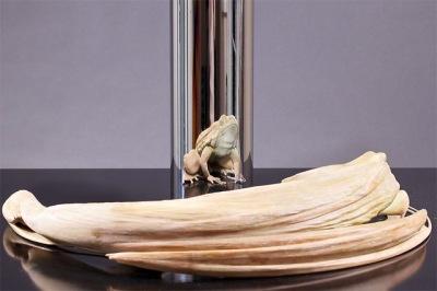 Jonty Hurwitz - Frog