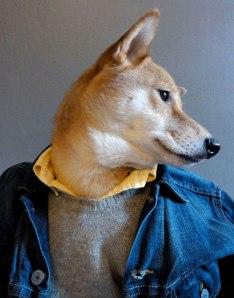 Menswear Dog 3
