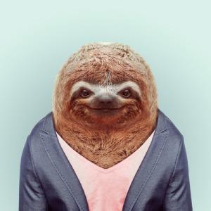 Yago Partal - Zoo Portraits (Sloth)