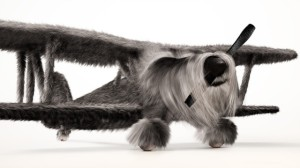 Dogfighter - Biplane