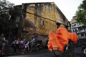 Buddhist Bug Project - Anida Yoeu Ali (Bike)