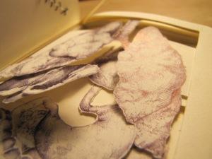 Kathleen Sawyer - Book Autopsy (Organs Detail)