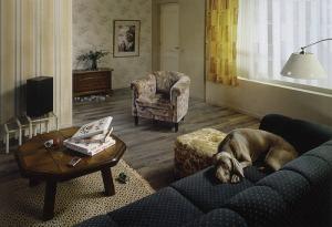Villaarena ad living room (before)