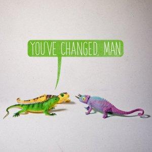 Aled Lewis -Toy Stories (Chameleon)