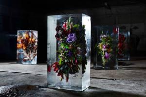 iced flowers 1 -makoto azuma