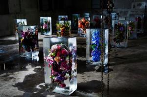 iced flowers 2 -makoto azuma