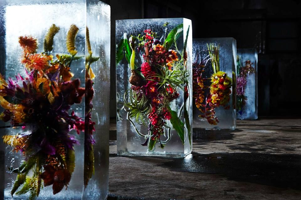 [Image: iced-flowers-3-makoto-azuma.jpg]