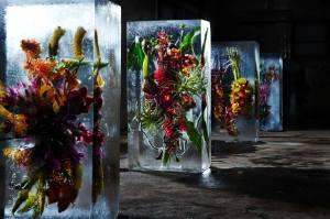 iced flowers 3 -makoto azuma