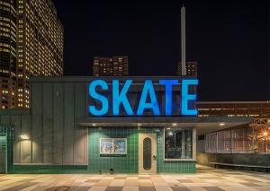 New York (Skate) - Franck Bohbot