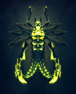 insect-5